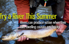 Try a River This Summer