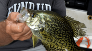 CatchingCrappies-Feature