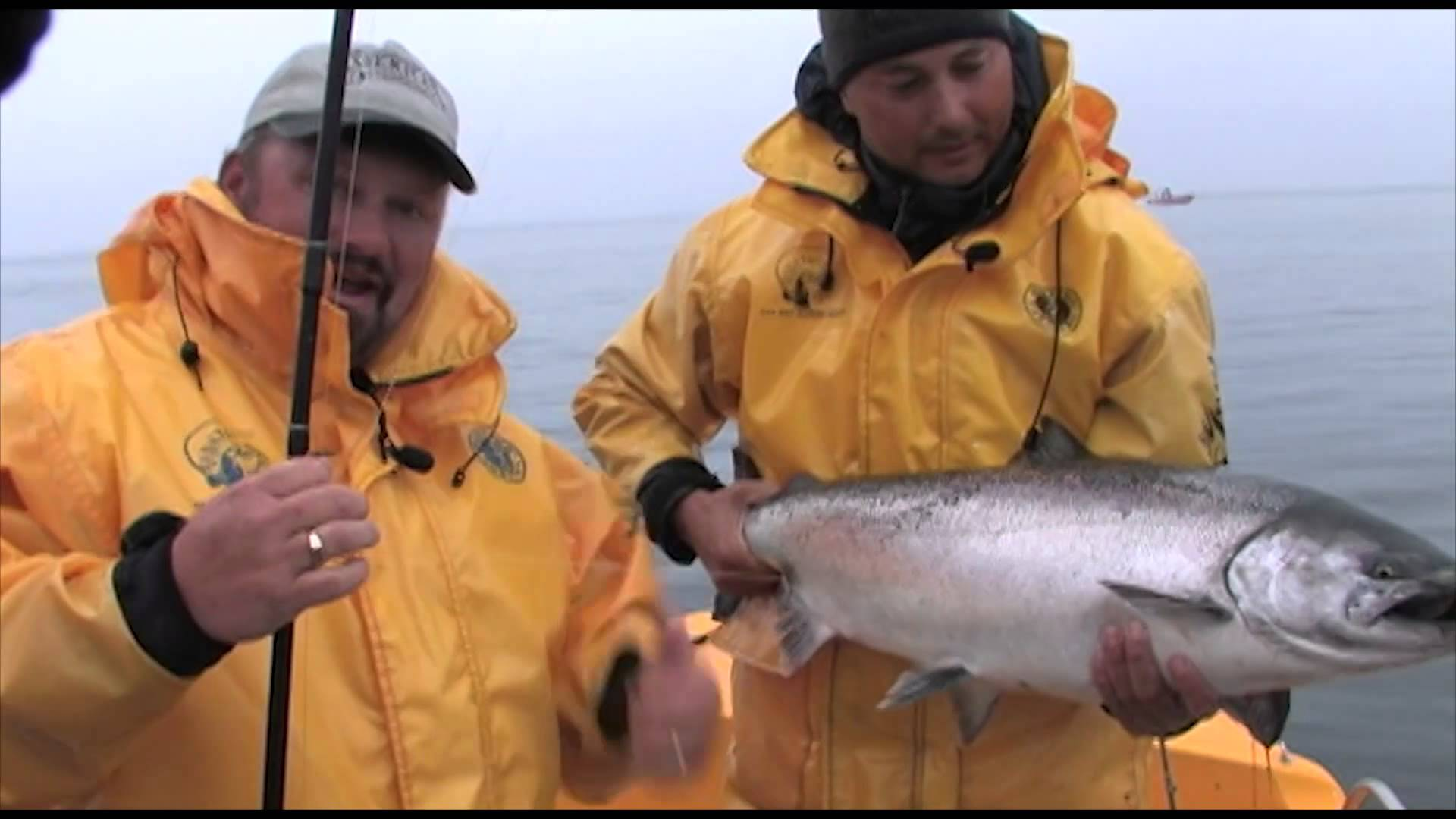 British Columbia Chinook Salmon