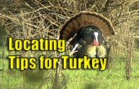 Locating Turkeys with Lee Clark