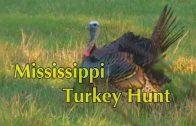 Mississippi Turkey Hunt